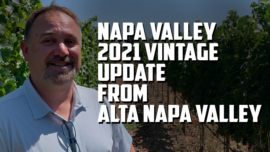 Fred from Alta Napa Valley tells us why they drop fruit during veraison – 2021 vintage update