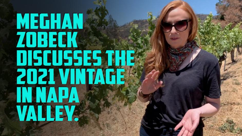 2021 vintage update with Meghan Zobeck from Burgess Cellars in Napa Valley
