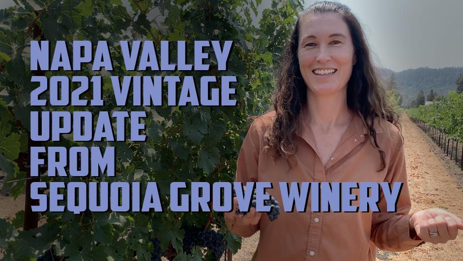 Napa Valley 2021 vintage