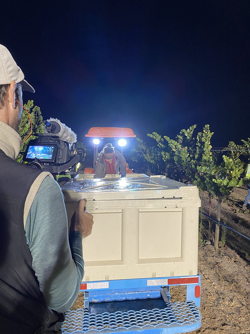 SommTV is in Napa Valley to cover the 2021 harvest!