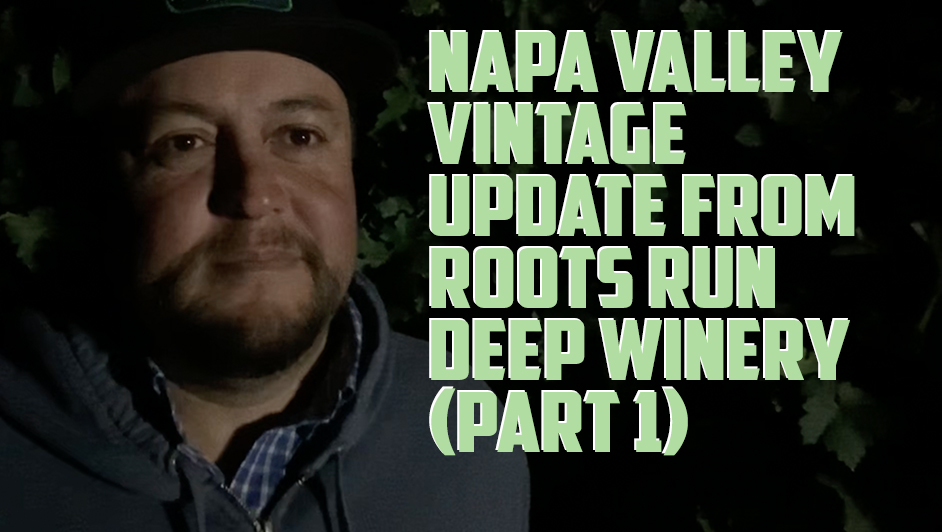 Macario from Roots Run Deep Winery in Napa Valley on harvesting at night