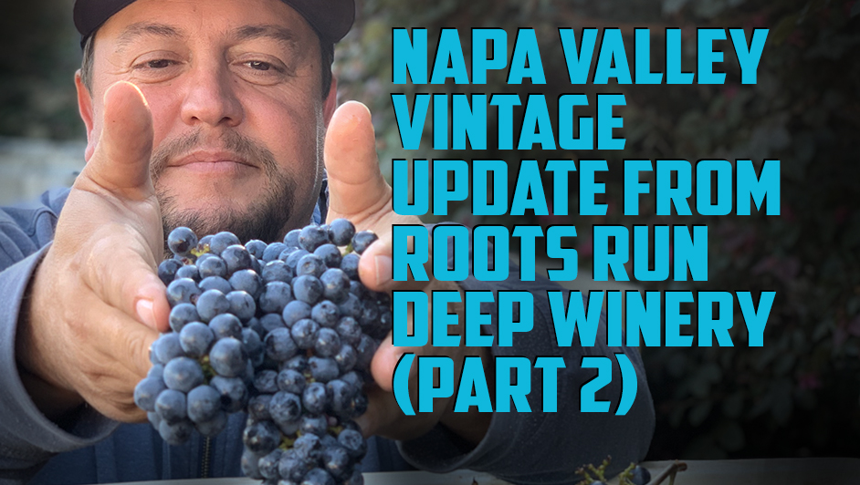 What do smaller berry size and smaller yields mean for Napa Valley in 2021?