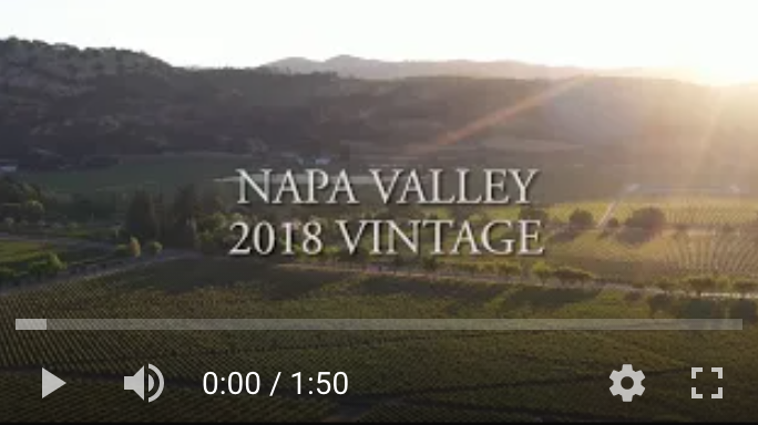 A look back on the 2018 Napa Valley vintage as they hit wine shop shelves around the world