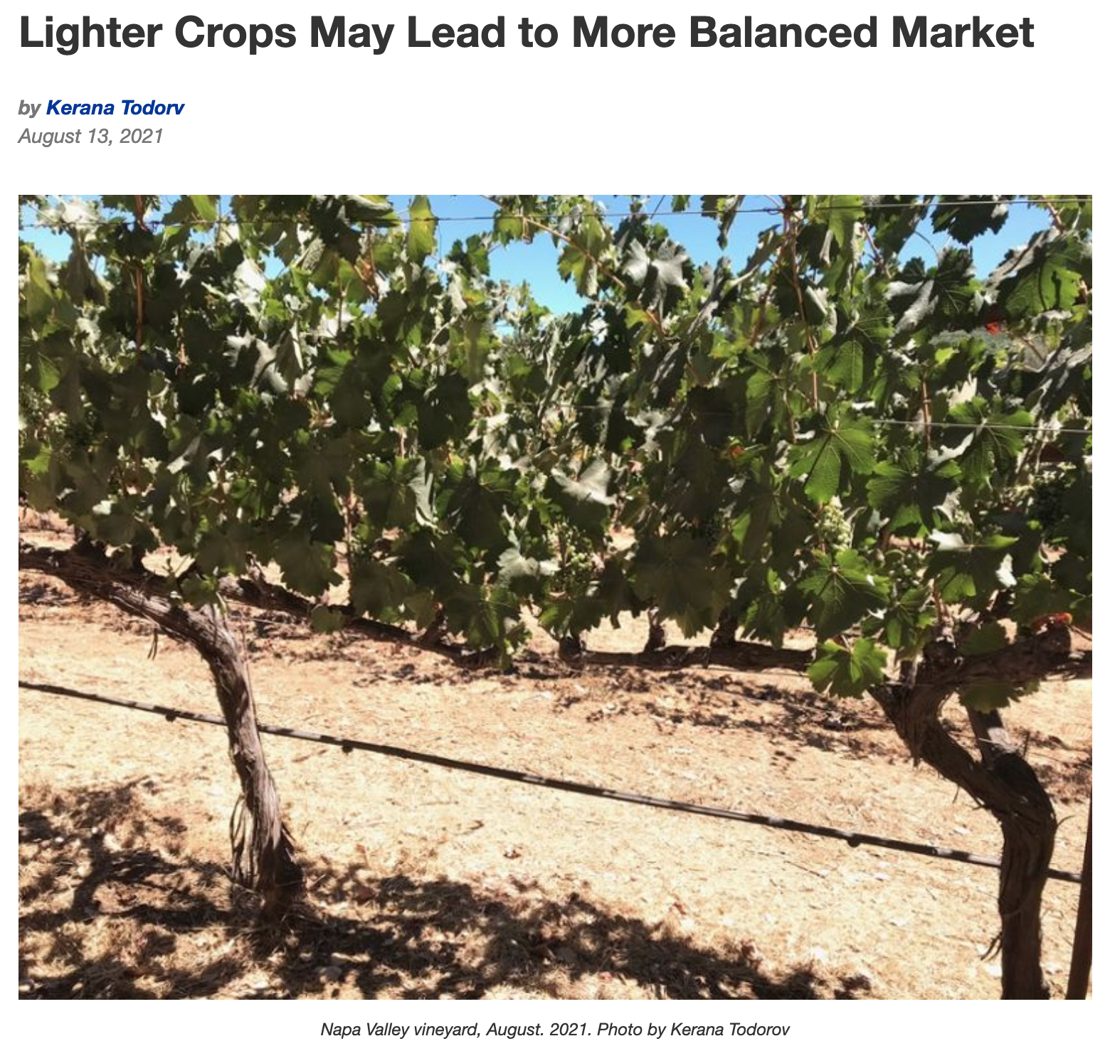 Lighter Crops May Lead to More Balanced Market – WineBusiness.com