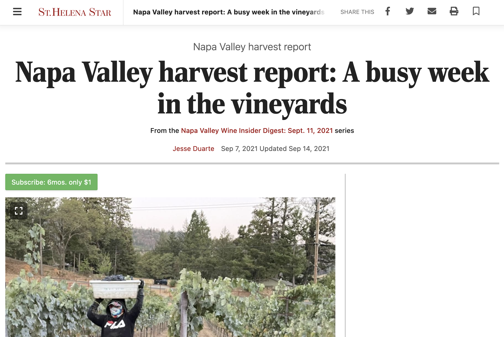 St Helena Star: A busy week in the vineyards