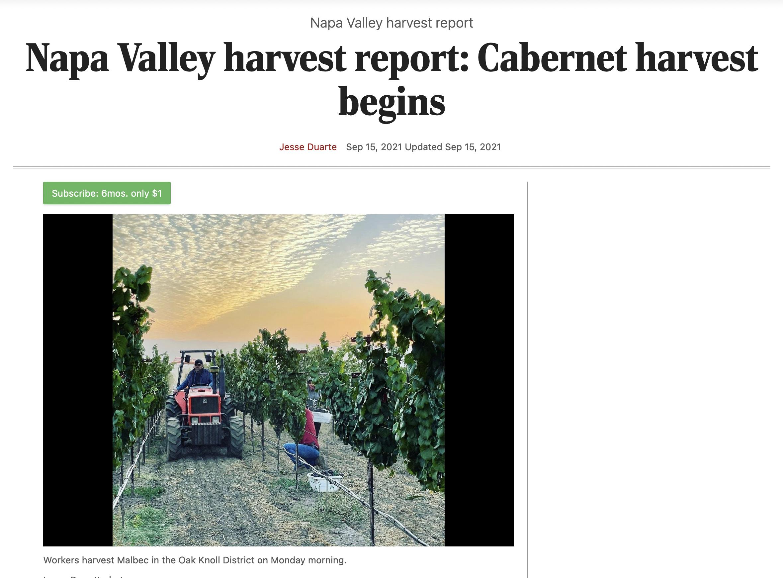 St Helena Star: Cabernet harvest begins