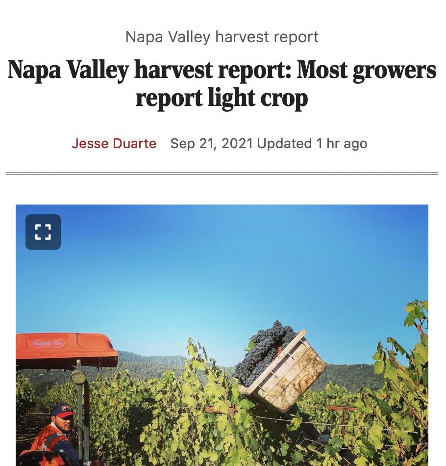 Napa Valley harvest report: Most growers report light crop