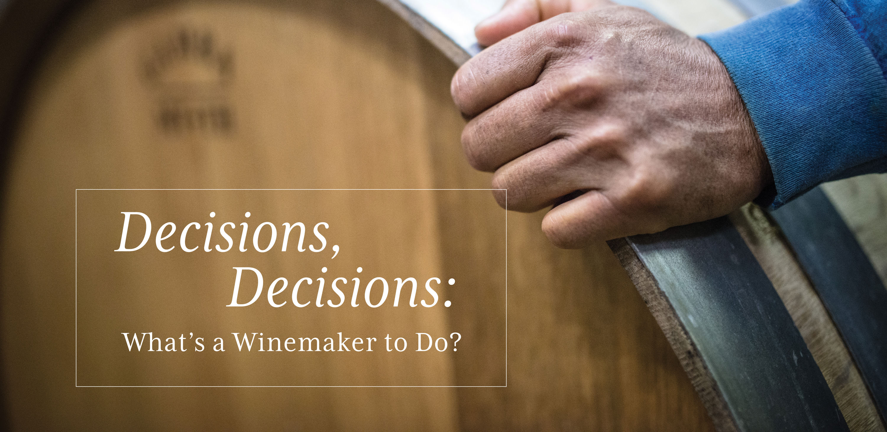 Decisions, Descisions: What's a Winemaker to Do?
