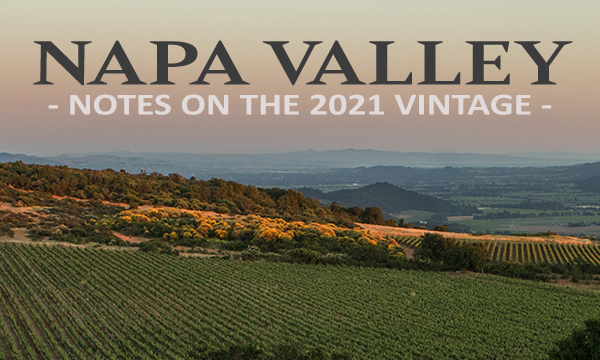 Napa Valley Harvest 2021