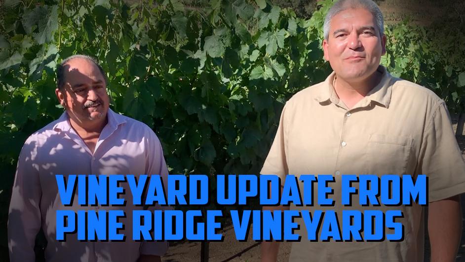2021 Napa Valley update from Josh Widaman and Gustavo Avina of Pine Ridge Vineyards